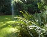 Zahradnické služby Brno