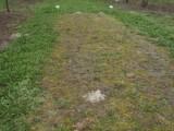 Bio totální herbicid