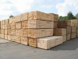 Dovoz Dřeva z Ukrajiny za Mimořádně Nízké Ceny a Nejlepší Kvalitu