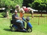 Zdarma poradím při koupi elektrického skútru pro handicapované