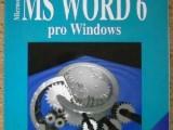MS WORD 6 pro Windows , /145K/ ,
