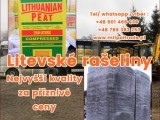 Litevské rašeliny nejvyšší kvality za příznivé ceny
