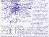 Diagnostika energetického systému těla s vysvětlením/ 1200 Kč