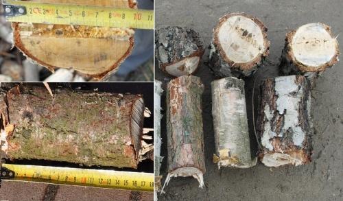 Drtič větví štěpkovač – špalíkovač RS 100 do 10cm