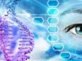 Energetická léčba+čištění pamětí duše-na dálku od 1800 Kč